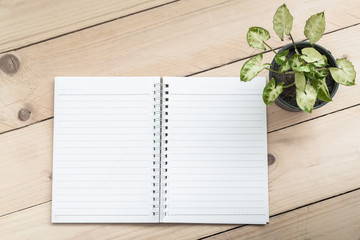 Notebook and plant on wood table background