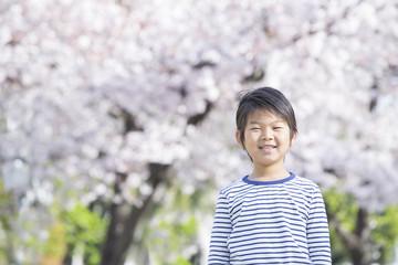 桜と新学期の男の子
