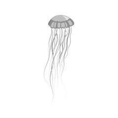 Monochrome Jellyfish Floating in Space
