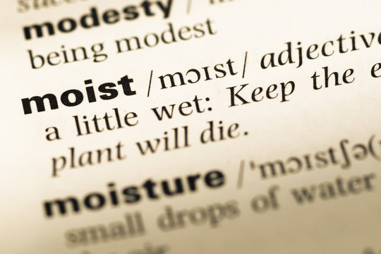 Close up of old English dictionary page with word moist