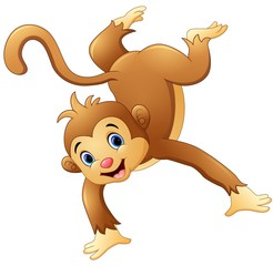 Dancing Monkey on white background