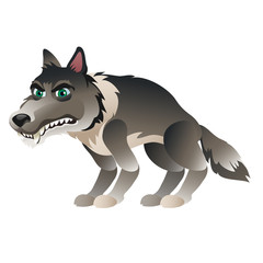 Wolf in cartoon style closeup, isolated vector