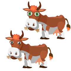 Two funny brown cow in cartoon style isolated