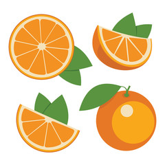 Oranges . Collection of whole and sliced orange fruits. Vector i