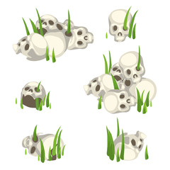 Few piles of human skulls in the grass