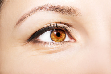 Beautiful insightful look brown woman's eyes