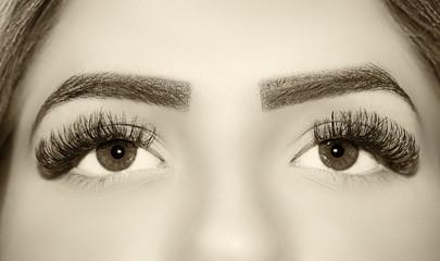Beautiful insightful look women's vintage eyes.  eyelash extension