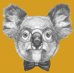 Original drawing of Koala with glasses and bow tie. Isolated on colored background.