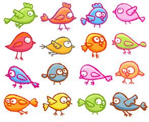Cute little birds