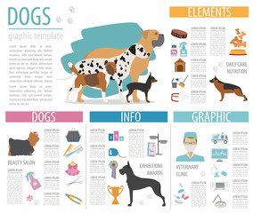 Dog info graphic template. Heatlh care, vet, nutrition, exhibiti