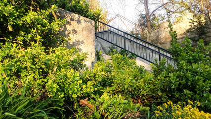 Stairway in city park at sunset or sunrise