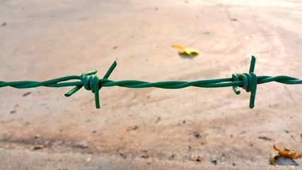 Green color barbed wire