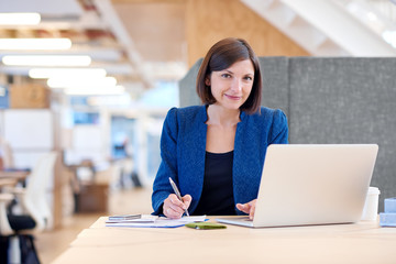 Smiling attractive young businesswoman working at her desk