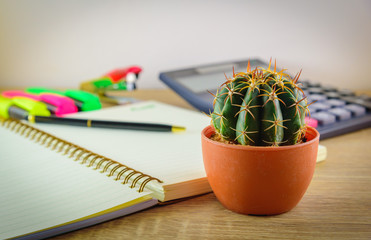 Beautiful cactus and blurred mix of office supplies  on wooden table background