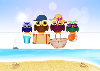 owls family on summer vacations