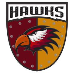 Professional sports logo hawks