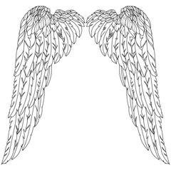 Graphical birds angel wings illustration. Vector.