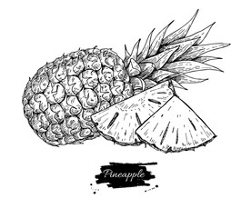 Vector hand drawn pineapple and sliced pieces. Tropical summer f