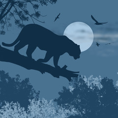 Silhouette view of panther on a tree