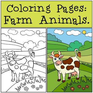 Coloring Pages: Farm Animals. Cute cow stands on the field and s