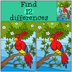 Children games: Find differences. Little cute parrot sits on the