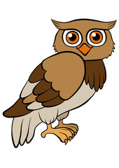 Cartoon birds for kids. Little cute owl smiles.