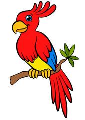 Cartoon birds for kids. Little cute parrot sits on the tree bran