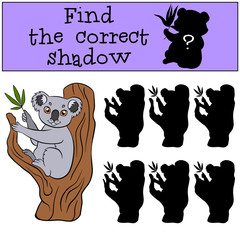 Children games: Find the correct shadow. Cute little koala sits