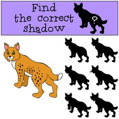 Children games: Find the correct shadow. Cute beautiful lynx sta