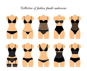 Female lingerie or female underwear set. Vector illustration