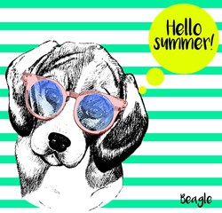 Vector close up portrait of  beagle dog, wearing the sunglassess. Bright hello summer beagle portrait. Hand drawn domestic pet dog illustration. Isolated on background with mint green strips.