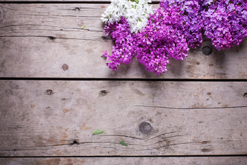 Flowers on weathered wooden background.