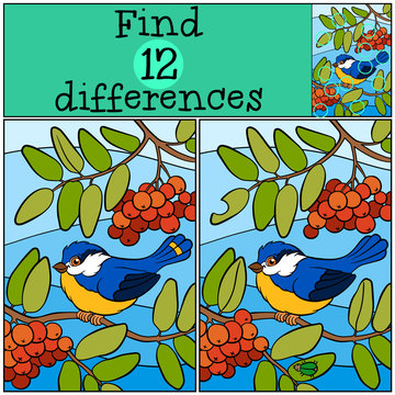 Children games: Find differences. Cute little titmouse.