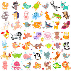 Vector illustration of cute animals and birds. Set of cute animals