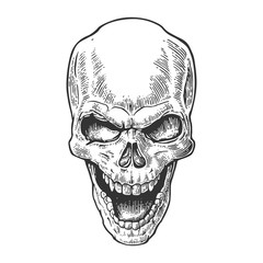 Skull human with a smile