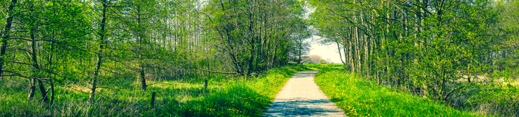 Countryside panorama scenery with a trail