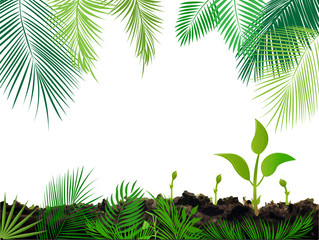 Tropical jungle background with palm tree and leaves.