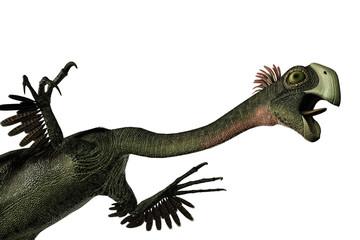 Foto op Aluminium Draw Gigantoraptor