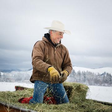 Farmer kneeling on trailer with hay