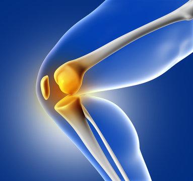 3D blue medical image of knee bone