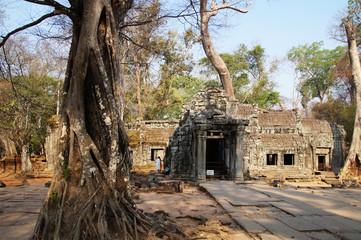 Ruins of Temple at Angkor Wat, Cambodia