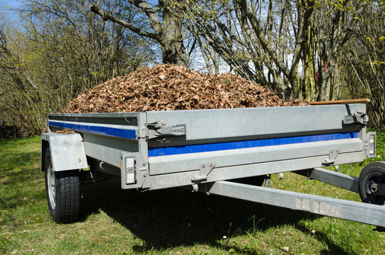 Small trailer loaded with dry leaves