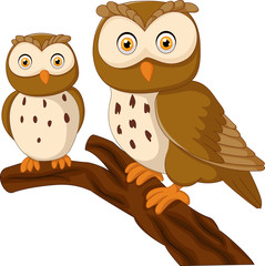 Cute owl couple cartoon