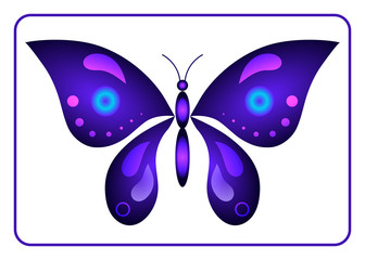 Butterfly beauty colorful sign. Neon creative silhouette, isolated on white background. Beautiful color icon in frame. Modern graphic decoration Design element. Bright light wings. Vector Illustration