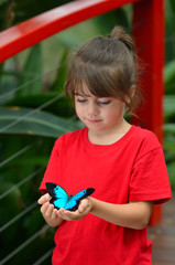 Little girl holds a Ulysses Swallowtail