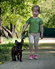 Proud little girl walking with a dog in the park. Happiness child. A dog on a leash. Purebred dog, french bulldog. The child bought the dog