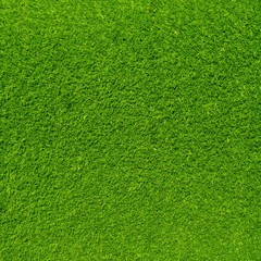 Tuinposter Gras Artificial grass