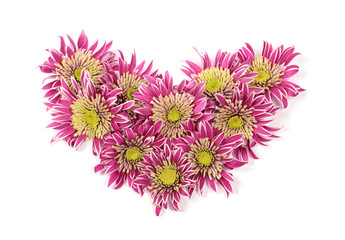 Bouquet of chrysanthemums in the form of a heart