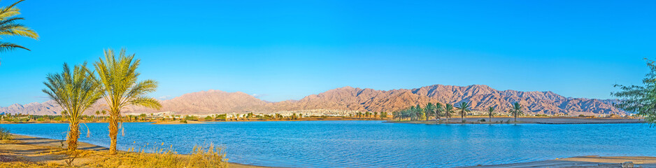 The nature of Eilat