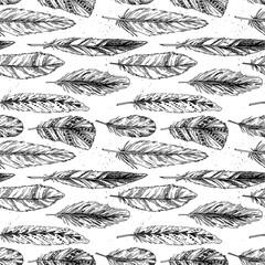 Seamless pattern. Hand drawn vector vintage illustration - Feath
